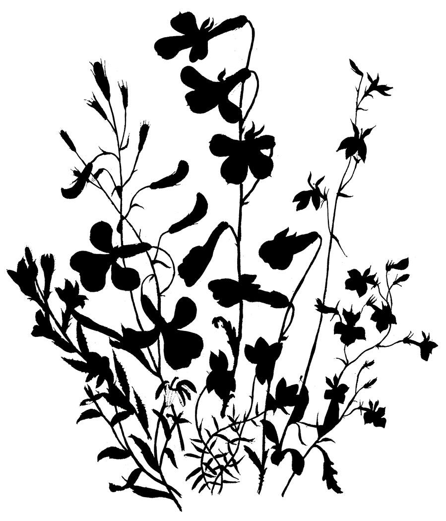 Decals floral, wreaths, laurels on Pinterest | Silhouette ...